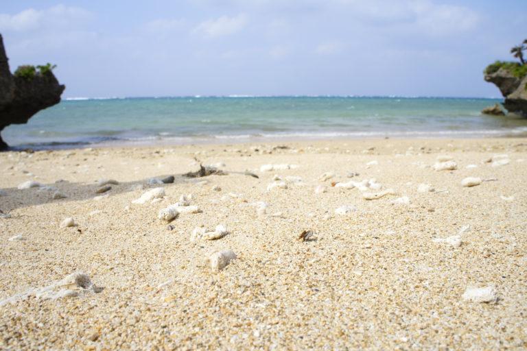 あちみぃん近くの浜辺