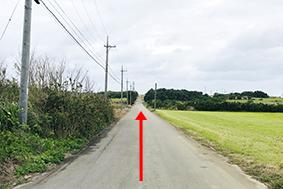 栄集落入り口の道